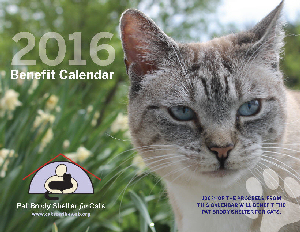Order your 2016 Calendar Today